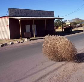 tumbleweed-through-ghost-town
